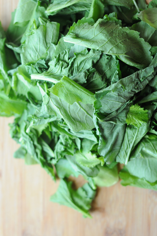 Young-broccoli-rabe-greens